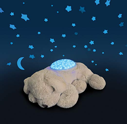 Turtle nightlight by Cloud B