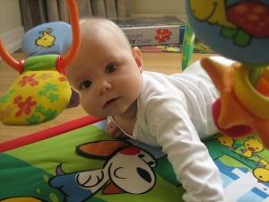 Cute nineteen weeks old baby