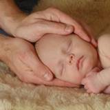 Baby head in osteopath hands